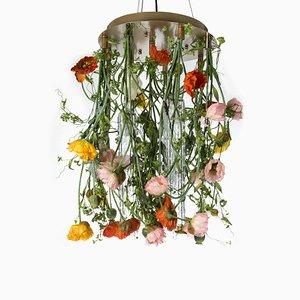 Lámpara de araña Poppy Flower Power de cristal de Murano champán de VGnewtrend