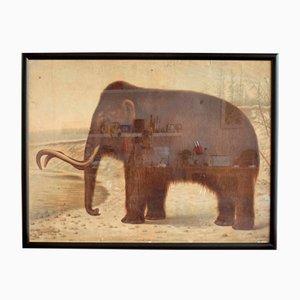 Mammut Lehrtafel von Eugen Wilhelm Pfizenmayer, 1905