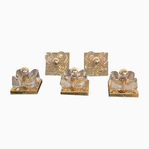 Brass & Glass Flower Sconces by Luigi Colani for Sische, 1970s, Set of 5