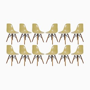 Vintage DSW Chairs by Charles & Ray Eames for Herman Miller, 1970s, Set of 12
