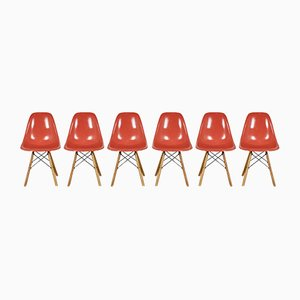 Sedie DSW di Charles & Ray Eames per Herman Miller, anni '70, set di 6