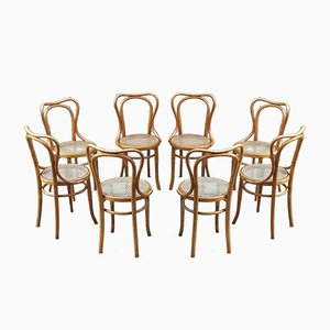 Antique No. 55 Cane Dining Chairs by Jacob & Josef Kohn, 1914, Set of 8