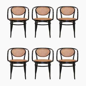 210R Bentwood and Rattan Armchairs from Thonet, 2001, Set of 6