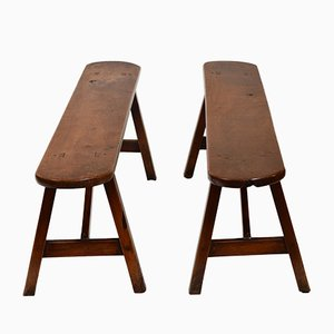 19th-Century Fruit Wood Benches, Set of 2
