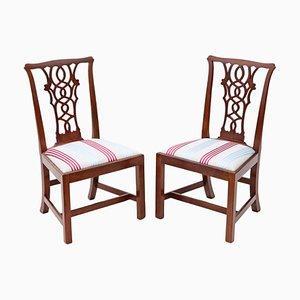 Sedie da pranzo Chippendale antiche in mogano, set di 2