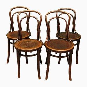 Sedie da bistrò antiche in legno piegato di APM, set di 4