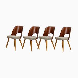 Esszimmerstühle von Oswald Haerdtl für Tatra, 1960er, Set of 4