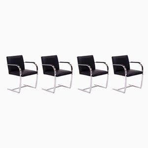 Sedie da pranzo Brno nere di Ludwig Mies van der Rohe per Knoll Inc. / Knoll International, inizio XXI secolo, set di 4