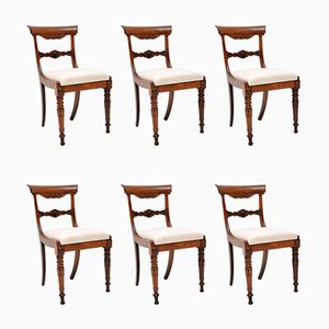 Antique Rosewood William IV Dining Chairs, Set of 6