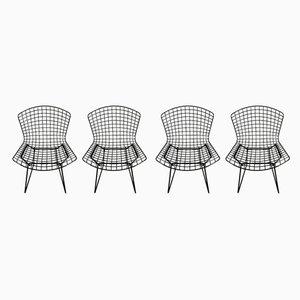 Esszimmerstühle von Harry Bertoia für Knoll Inc. / Knoll International, 1970er, 4er Set