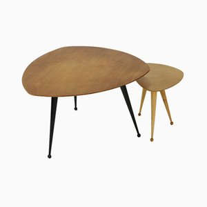 Vintage TB39 Kidney Shaped Coffee Tables by Cees Braakman for Pastoe, Set of 2