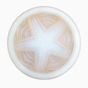 Piatto vintage a forma di stella marina in vetro opalescente di Rene Lalique