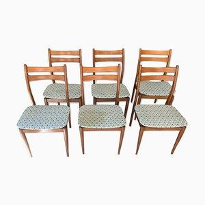 Sedie da pranzo, anni '50, set di 6