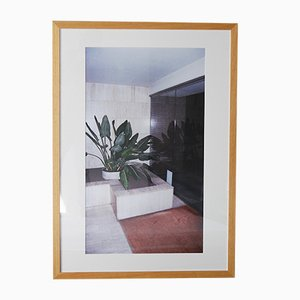 Inside Green Entrance Print by Stephanie De Smet