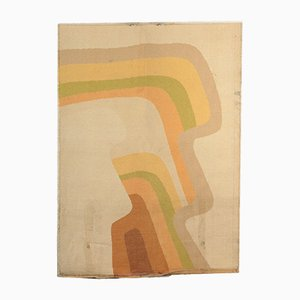 Vintage Shaggy Rainbow Carpet