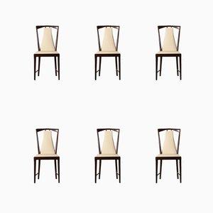 Stühle von Osvaldo Borsani, 1950er, 6er Set