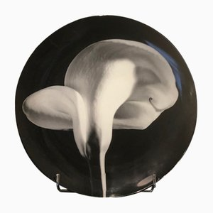 Vintage Calla Lilly Plate by Robert Mapplethorpe for Swid Powell, 1989