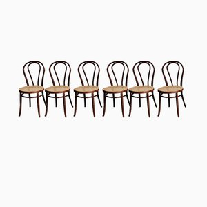 Esszimmerstühle von Thonet, 1950er, 6er Set