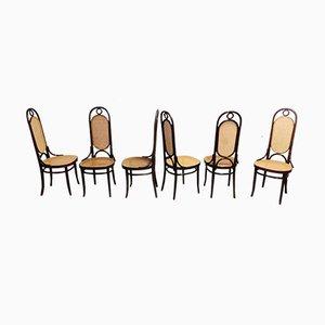 Sedie da pranzo Thonet nr. 17, anni '80, set di 6