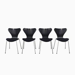 Sillas 3107 vintage en negro de Arne Jacobsen para Fritz Hansen, 2007. Juego de 4