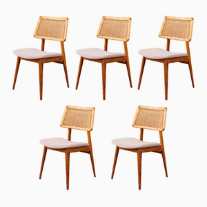 Cherry Wood Dining Chairs from Habeo, 1950s, Set of 5