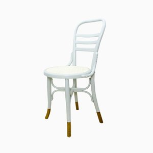 Antique Art Nouveau Bentwood Dining Chair
