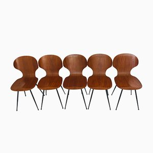 Mid-Century Plywood and Metal Dining Chairs by Carlo Ratti for Lissoni, 1950s, set of 5
