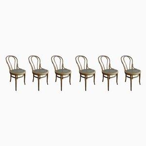 Antike österreichische Thonet Nr. 18 Stühle von Michael Thonet für Thonet, 6er Set