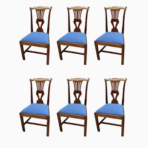 Antique Fruitwood Dining Chairs, Set of 6