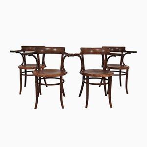 Antike Armlehnstühle aus Bugholz von Michael Thonet, 4er Set