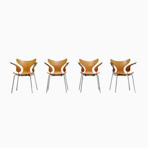 Sillas de comedor modelo 3208 en forma de gaviota de Arne Jacobsen para Fritz Hansen, 1972. Juego de 4