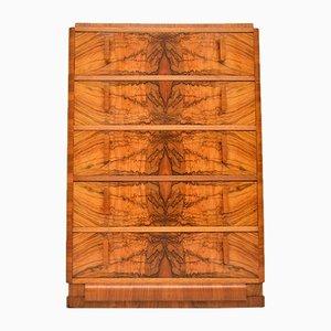 Cajonera Art Déco de madera nudosa de nogal, años 20