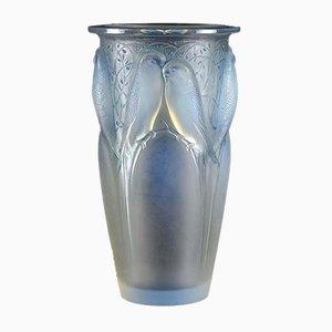Vase Ceylan par René Lalique, années 30
