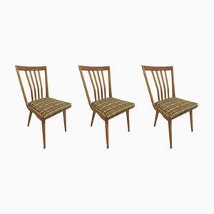Tschechische Esszimmerstühle, 1960er, 3er Set