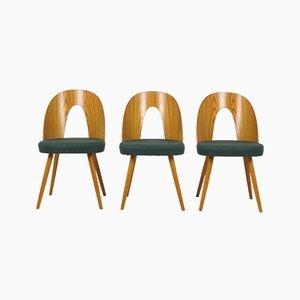 Vintage Esszimmerstühle von Antonin Suman für Mier, 1966, 3er Set