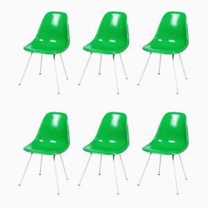 DSX Esszimmerstühle von Charles & Ray Eames für Herman Miller, 1970er, 6er Set