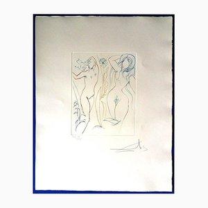 Portfolio The Earth Paradise con nove incisioni di Salvador Dali, 1974