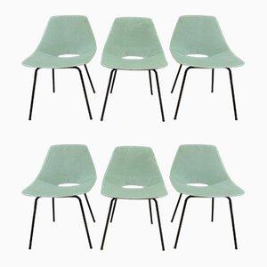 Esszimmerstühle von Pierre Guariche für Steiner, 1950er, 6er Set