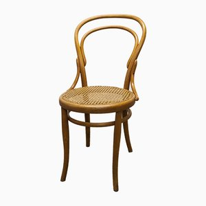 Cane Dining Chair from Thonet, 1960s