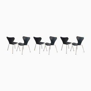 Sedie da pranzo della serie 7 di Arne Jacobsen per Fritz Hansen, anni '70, set di 6