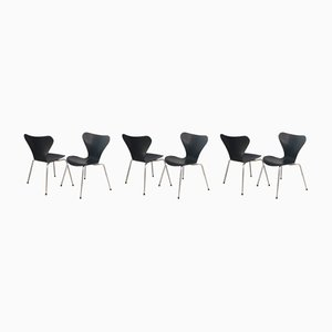 Series 7 Dining Chairs by Arne Jacobsen for Fritz Hansen, 1970s, Set of 6