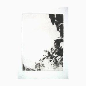 Portafolio Shakespeare Sonnets con 7 grabados y 7 Bons a Tirer Prints de Zao Wou-ki, 1984