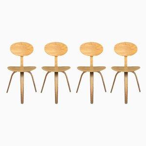 Esszimmerstühle aus Eschenholz von Hugues Steiner, 1950er, 4er Set