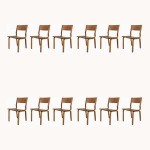 Sillas de escritorio Saint Catherines de roble laminado de Arne Jacobsen para Fritz Hansen, años 60. Juego de 12