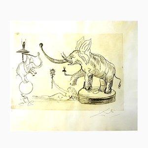 The Circus - Elephants Pergamentradierung von Salvador Dali, 1965