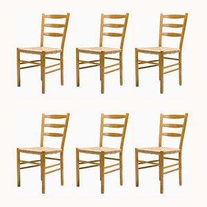 Chaises de Salon Vintage par Cees Braakman pour Pastoe, Set de 6