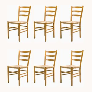 Vintage Dining Chairs by Cees Braakman for Pastoe, Set of 6