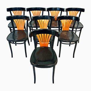 Sedie da pranzo antiche in legno curvato di ZPM Radomsko per ZPM Radomsko, set di 8