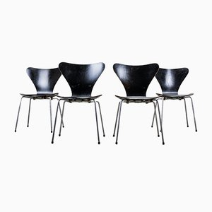 Series 7 Dining Chairs by Arne Jacobsen for Fritz Hansen, 1950s, Set of 4
