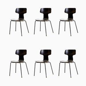 Modell 3103 Hammer Chairs von Arne Jacobsen für Fritz Hansen, 1970er, 6er Set